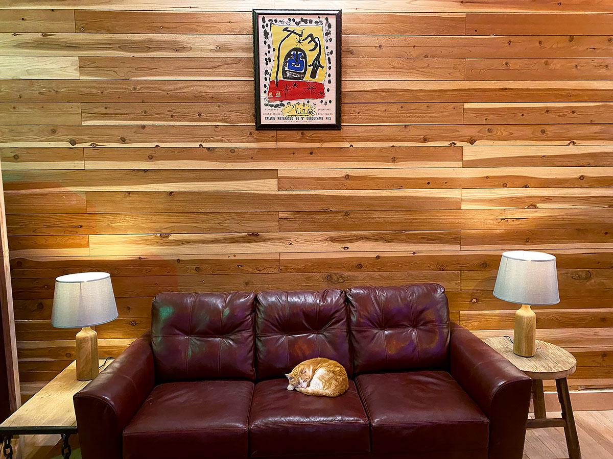BigBlue-TrackingRoom-Couch